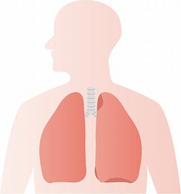 背中のこり・張り・痛み ~肋骨と横隔膜との関係編~